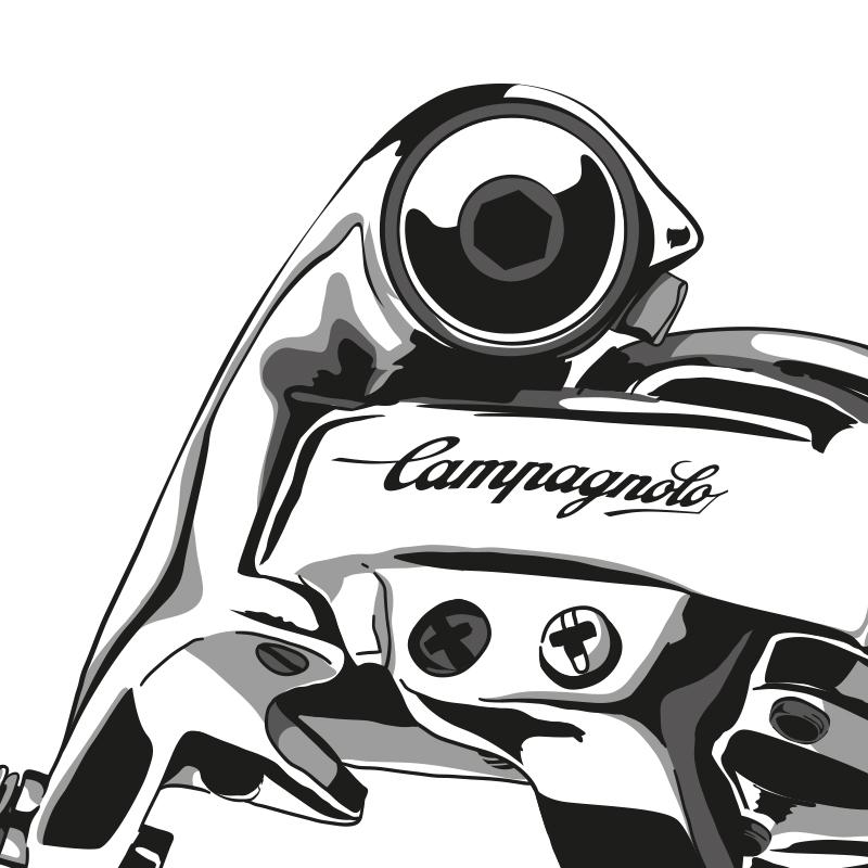 Campa_800x800
